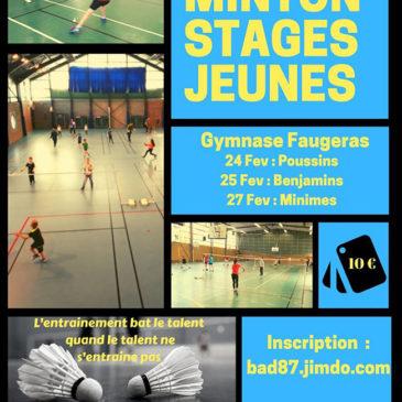 Stages jeunes de badminton